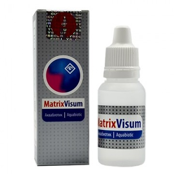 Matrix Visum