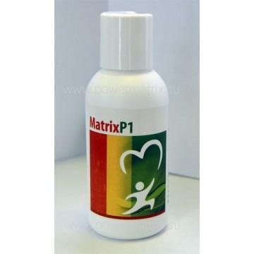 Matrix P1